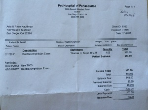 Vet Bill, since I didn't take photos